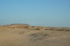 The landscape around Sir Bani Yas Island